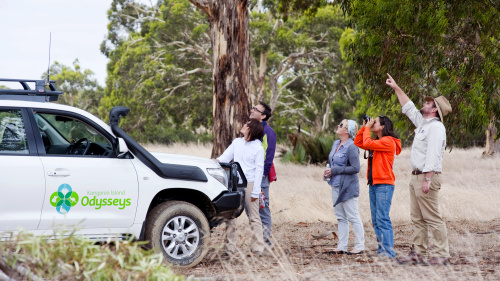 Kangaroo Island Small-Group 4WD Tour