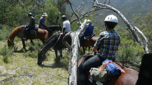 2-Day Kangaroo Valley Adventure Trip