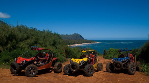 ATV Tour: Trail Riding & Waterfall Swimming