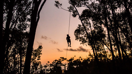 Sunset Ziplining
