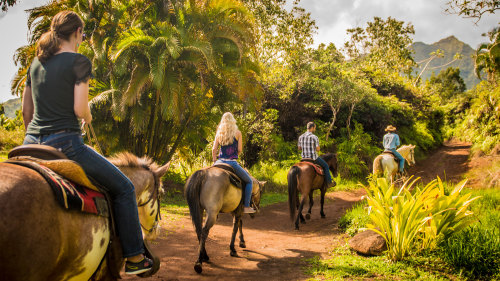 Tropical Horseback Adventure