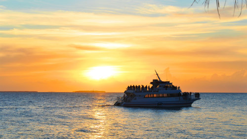 Sunset Cruise & Glass Bottom Eco Tour