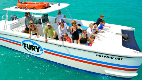 Dolphin Watch & Snorkeling Tour
