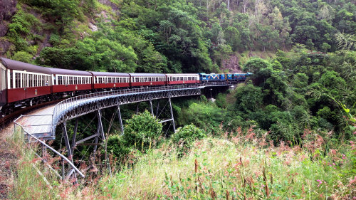Green Island & Kuranda Full-Day Tour by Doki Doki Tours