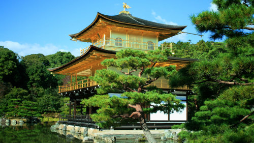 Japanese Gardens & Miniature Landscapes Tour