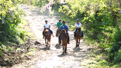 Horseback Riding Adventure