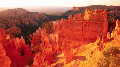 Bryce Canyon & Zion National Park Full-Day Tour by Adventure Photo Tours