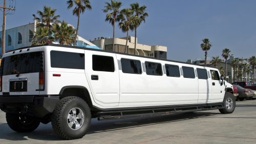 Private Hummer Limo Tour by Another Side Tours