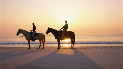 Desert & Beach Guided Horseback Ride