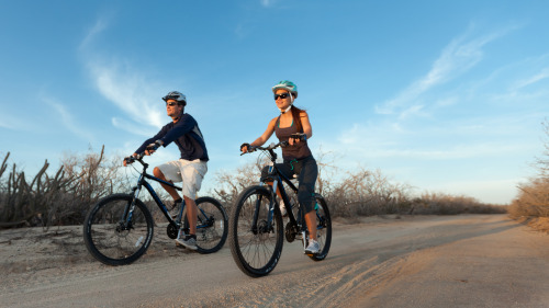 Half-Day Off-Road Guided Mountain Bike Tour