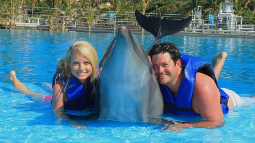 Interactive Dolphin Encounter