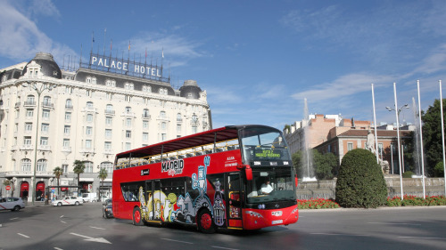 Hop-On Hop-Off Bus Tour by Julia Travel