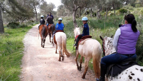 Horse Riding Tour by Trip4Real