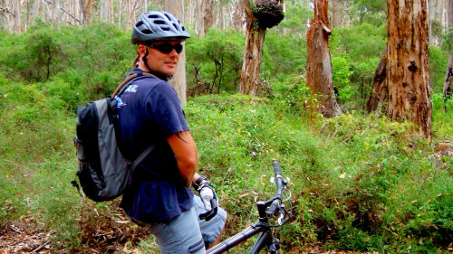 Karri Forest Mountain Bike Tour by Dirty Detours