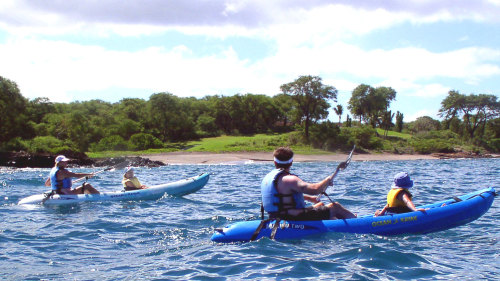 South Shore Kayak Trip with Snorkeling at Turtle Town