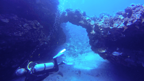 Lanai Cathedrals 2-Tank Dive