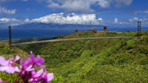 Kapalua Ridge Trek & Beach Adventure