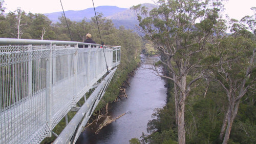 Huon Valley with Tahune Forest Airwalk Tour