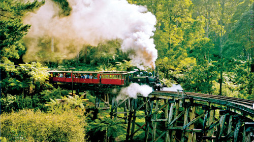 Half-Day Tour & Puffing Billy Steam Train Ride by AAT Kings