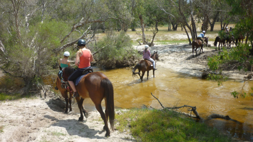 River Horse Ride by 1800 Trail Rides