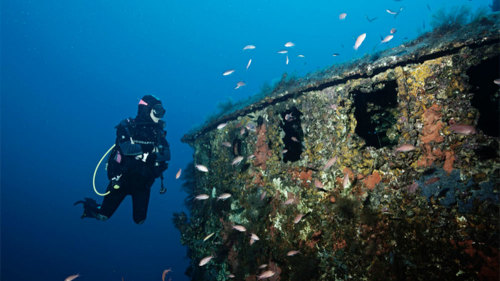 First-Time Scuba Dive off the Northern Coast by Trip4Real