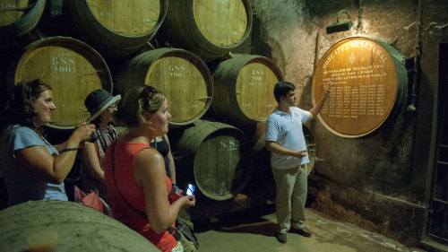 Private Arrábida Wine Full-Day Tour