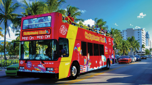 Hop-On Hop-Off Bus Tour by City Sightseeing