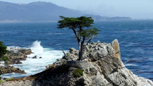 Pacific Coast Highway to Monterey & Carmel-by-the-Sea by Extranomical Adventures