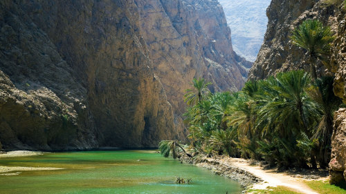 Coast of Oman 4x4 Full-Day Tour