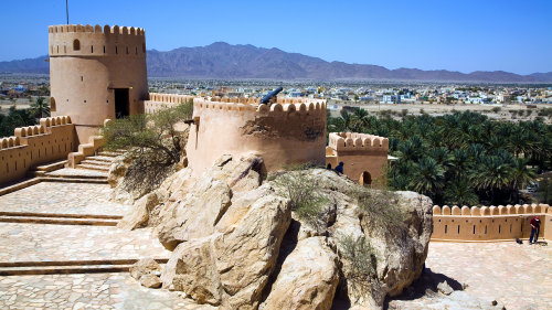 Batinah Coast Full-Day Tour