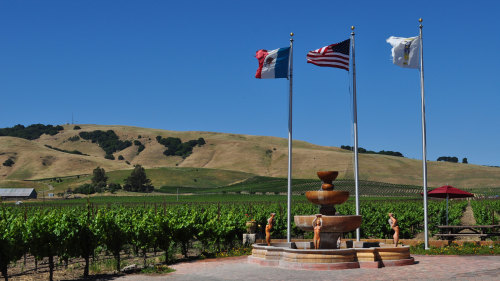 Wine Tour in Napa & Sonoma Valley by Green Dream Tours