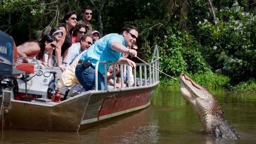 Honey Island Swamp Day Tour by Cajun Encounters