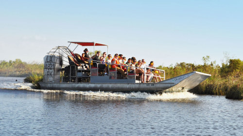 Jean Lafitte Airboat Experience