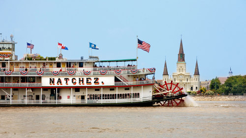 Gray Line New Orleans: Super City Paddle & Wheel Tour