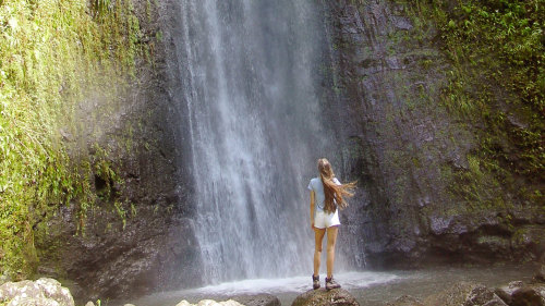 Manoa Waterfall Hiking