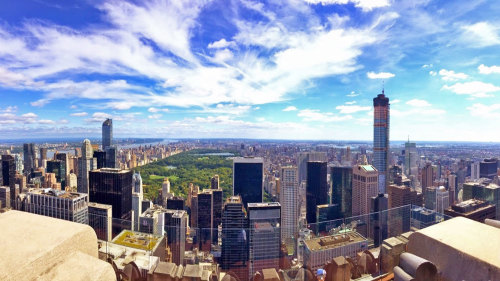 One Perfect Day in New York City Tour