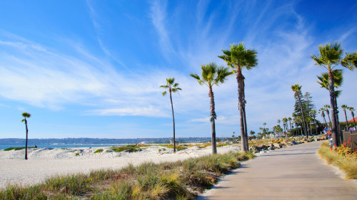 Coronado Island Bike Tour by Hike Bike Kayak San Diego
