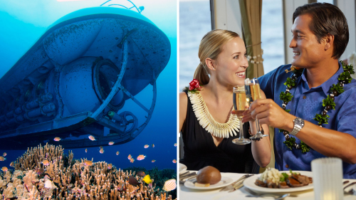Atlantis Sumbarine and Dinner Cruise Combo