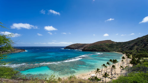 Oahu Circle Island Tour with Pearl Harbor Visit