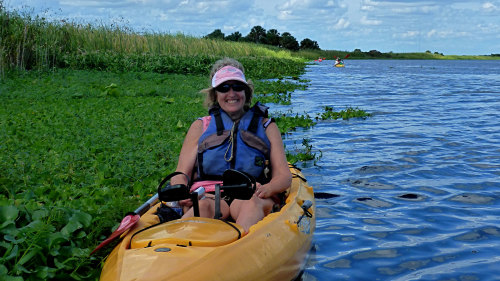 Manatee Encounter & Kayak Tour in Blue Spring State Park