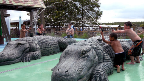 Gatorland & Airboat Ride by Grayline