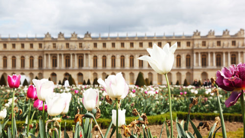 Skip-the-Line: Versailles Palace & Gardens Tour