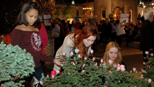 Philadelphia Flower Show - General Admission & Evening Events