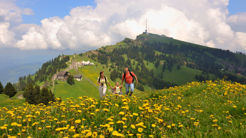 Mount Rigi & Lucerne Boat Cruise by Best of Switzerland Tours
