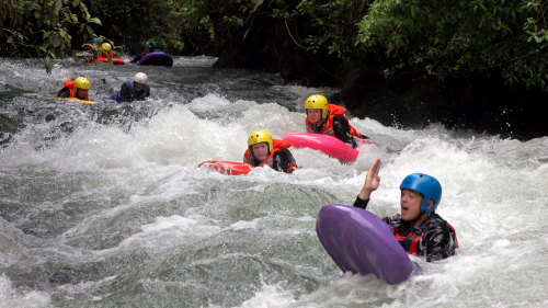 Kaituna River Sledging Experience