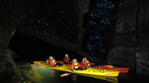 Glowworm Kayak Evening Tour by Waimarino