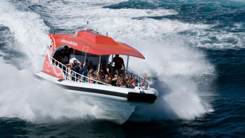 Rottnest Island Speed Boat Adventure Tour