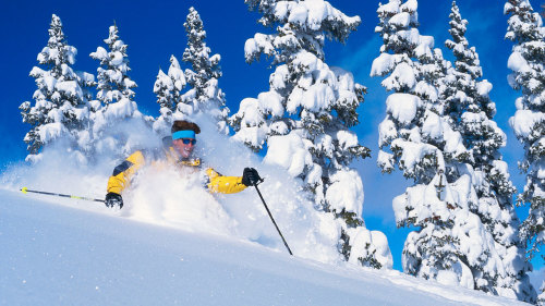 Snow Basin & Powder Mountain Ski Rental Package