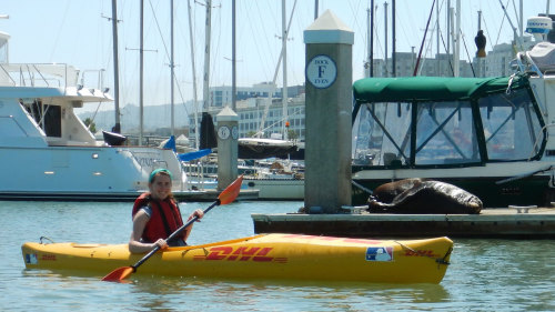 City by the Bay Family Kayaking Tour by City Kayak