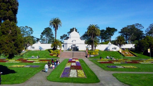 Golden Gate Park Tour & Cal Academy of Sciences by City Sightseeing